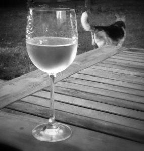 wineandwag