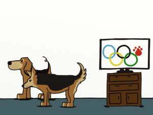 All Dogs and the Olympics