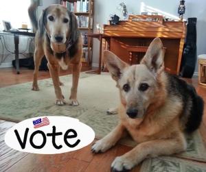 alldogssupportvoting