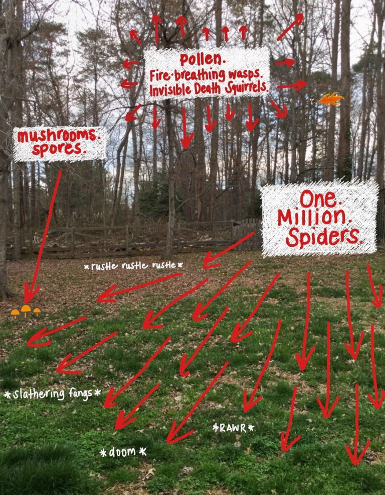 Spring Arrives on Little Spider Feet